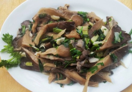 oyster-mushrooms-ready-for-serving-copy
