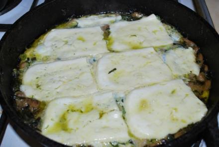 cheese-tarragon-mushroom-breakfast